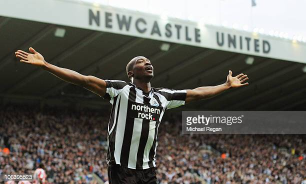 Shola Ameobi of Newcastle celebrates scoring to make it 40 during the Barclays Premier League match between Newcastle United and Sunderland at St...