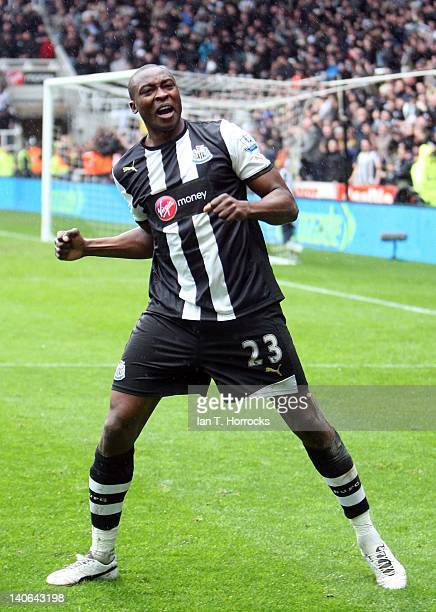 Shola Ameobi of Newcastle United celebrates after scoring the equalising goal during the Barclays Premier League match between Newcastle United and...