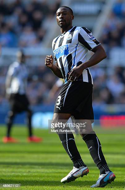 Shola Ameobi of Newcastle United in action during the Barclays Premier League match between Newcastle United and Swansea City at St James Park on...