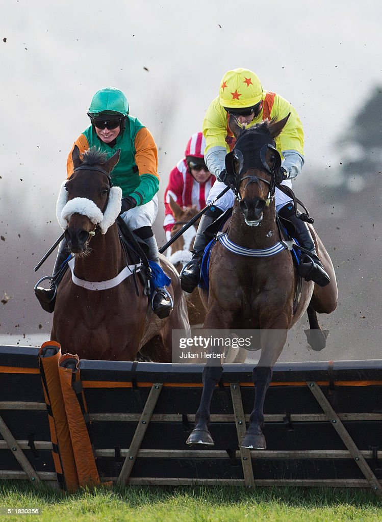 Shoofly Milly ridden by Matt Griffiths leads the field over an early flight before going on to win The Aspen Waite Complete Business Growth Services...