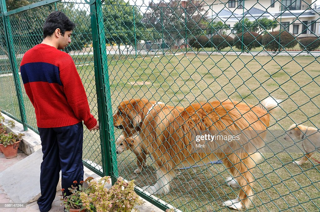 Shooter Abhinav Bindra with his dogs at home on February 11 2012 in Chandigarh India