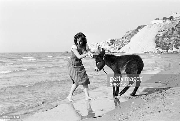 Shooting Of The Film 'La Loi' By Jules Dassin 12 juin 1958 tournage du film 'La Loi' de Jules DASSIN Sur la plage au bord de l'eau l'actrice Gina...