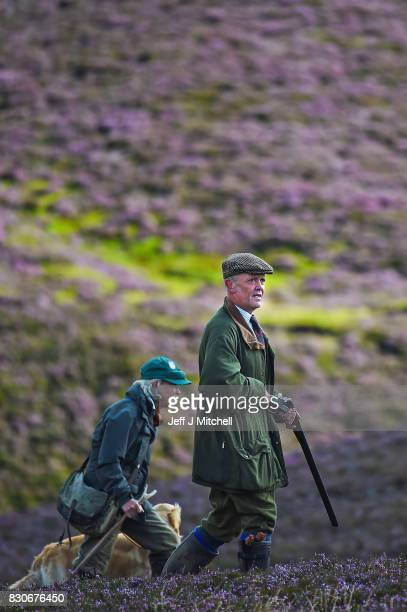 A shooting party heralds the new shooting season on a grouse moor at the Alvie Estate on August 12 2017 in Aviemore Scotland The Glorious 12th...