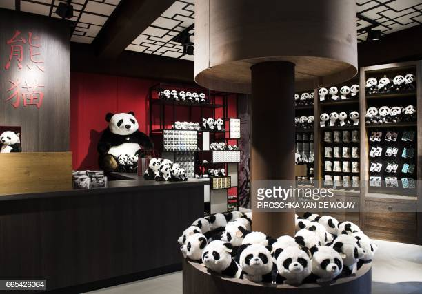 A shop dedicated to pandas at the Ouwehands Zoo in Rhenen is pictured on April 6 2017 prior to the arrival on April 12 2017 from China of two pandas...