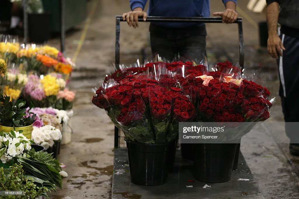 A shop keeper delivers roses to his stall during Valentines Day at Sydney Flower Market on February 14, 2013 in Sydney, Australia. Due to an unusually hot January in Australia an increasing number of roses have been sourced from South America and Africa to ensure Valentines supplies don't run out.