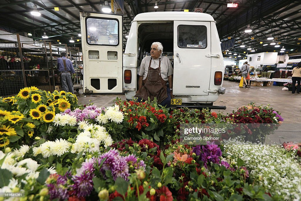A shop keeper waits for business during Valentines Day at Sydney Flower Market on February 14, 2013 in Sydney, Australia. Due to an unusually hot January in Australia an increasing number of roses have been sourced from South America and Africa to ensure Valentines supplies don't run out.
