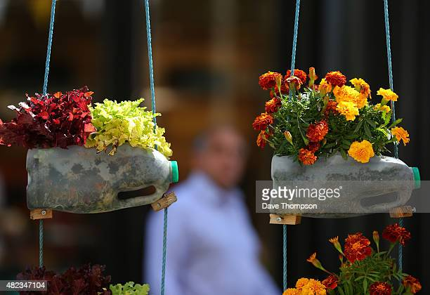 A shopper walks past flowers growing from plastic milk bottles at the Dig The City garden festival on July 30 2015 in Manchester England The event...
