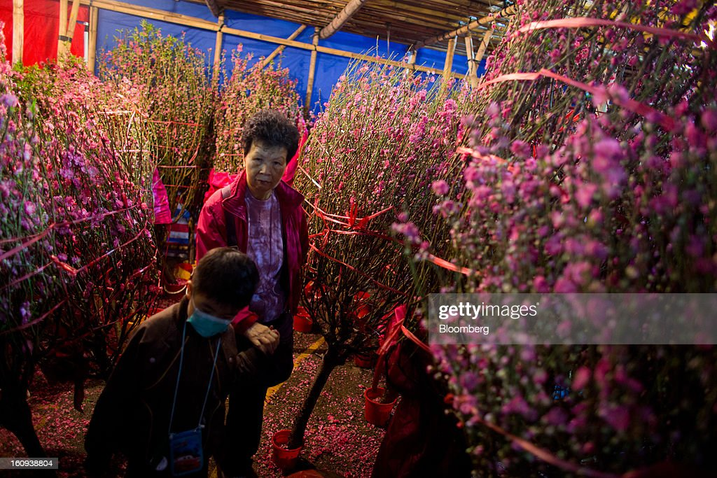 Shoppers browse peach blossoms displayed for sale for the Lunar New Year in the Mongkok district of in Hong Kong, China, on Thursday, Feb. 7, 2013. Hong Kong's stock market will be shut for three days next week for the Lunar New Year holidays, while markets in mainland China will be closed for the whole week. Photographer: Lam Yik Fei/Bloomberg via Getty Images