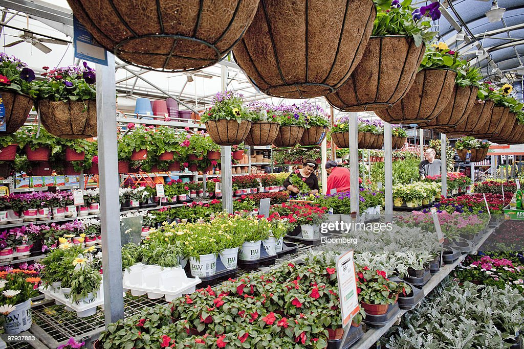 Shoppers Browse The Garden Section Of A Home Depot Store