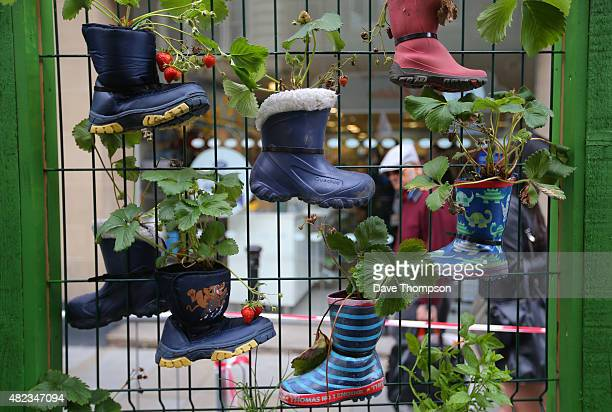 Shoppers walk alongside an exhibit at the Dig The City garden festival on July 30 2015 in Manchester England The event which runs from 31st July6th...