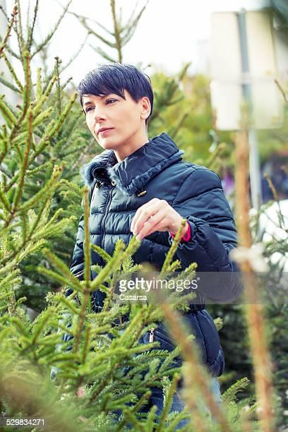 Shoppinf per un albero di Natale