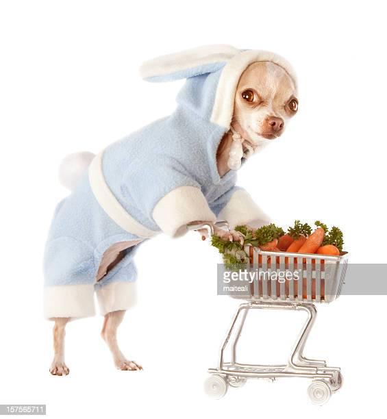 shopping-Karotten