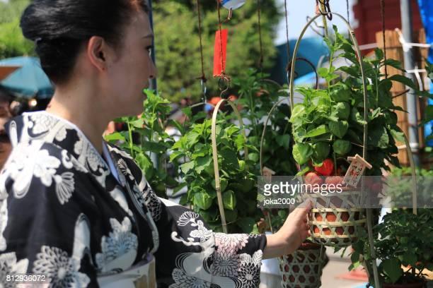 浅草でのショッピングの花 Buscket