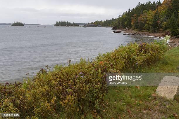 Shore at Seal Harbor, Mt Dessert Island