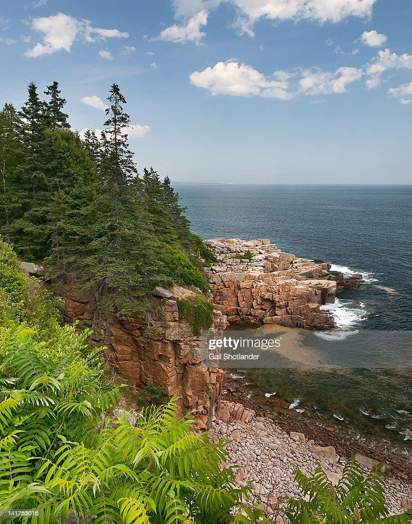 Shoreline strength (Acadia National Park)