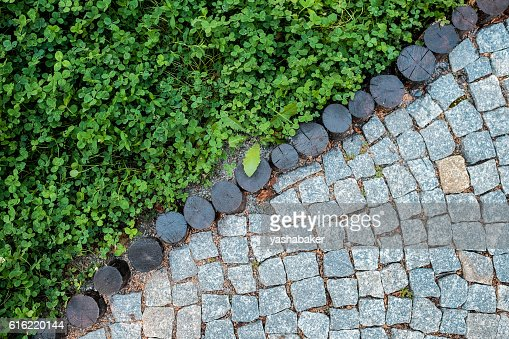 Short grass lawn and cobblestone pavement texture : Stock Photo