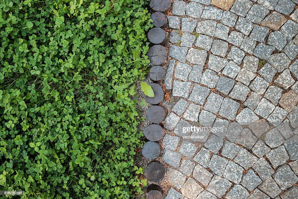 Short grass lawn and cobblestone pavement texture : Photo