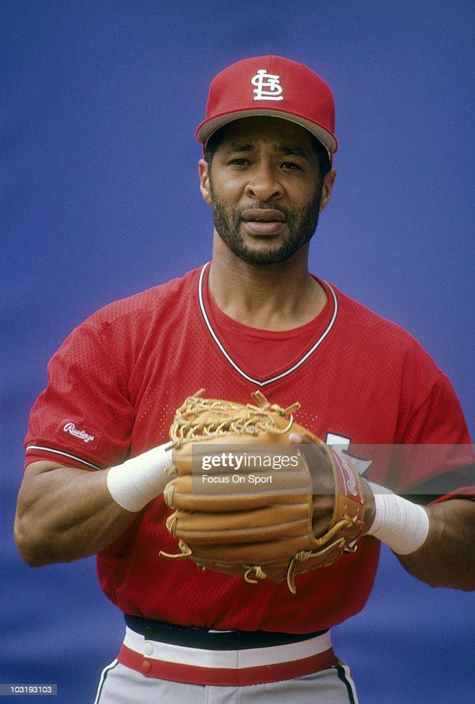 baseball league usa