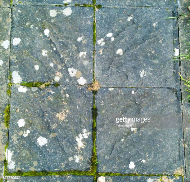 Shot Of Pavement On Footpath, pavement textures