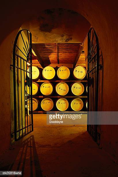 shot of the entrance to a wine cellar