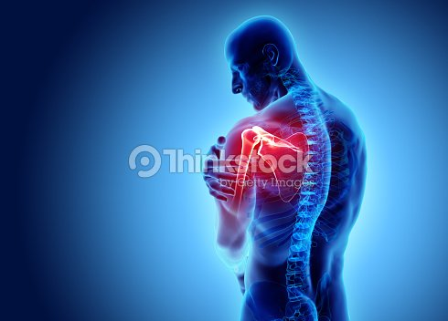 Shoulder painful skeleton x-ray, 3D illustration. : Stock Photo