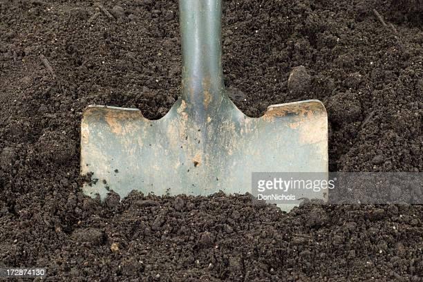 Shovel Digging