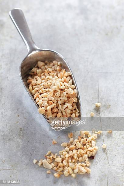 Shovel of chopped hazelnuts on metal