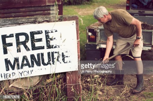 Shovelling manure : Foto de stock