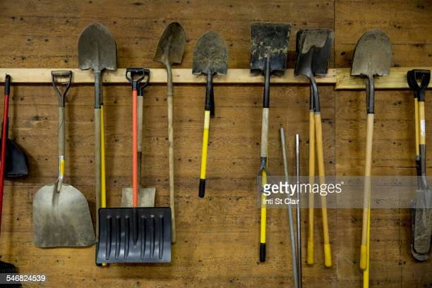 Shovels and tools hanging from hooks in shed