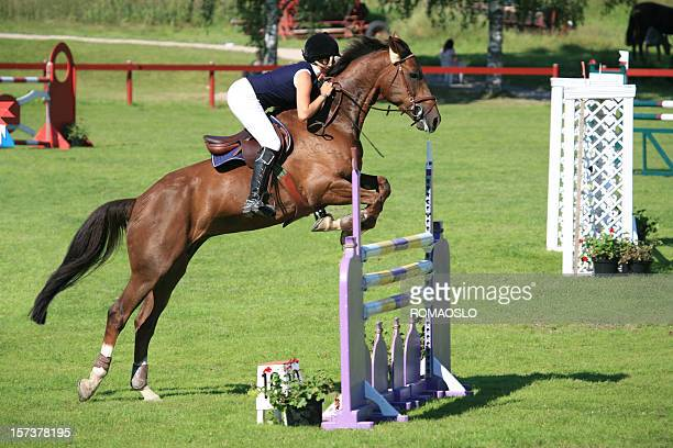 Tournoi de jumping