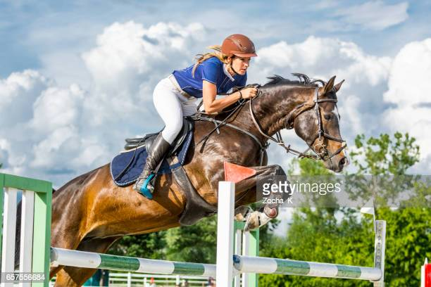 Show jumping - horse with female rider jumping over hurdle