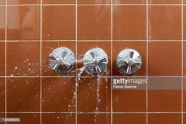 A shower faucet handle spraying leaking water