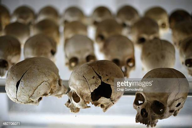 Showing signs of extreme trauma victims' skulls are displayed on glass shelves inside one of the crypts at the Nyamata Catholic Church genocide...