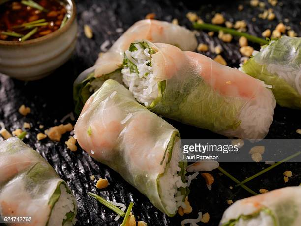 Shrimp and Rice Noodle Salad Rolls