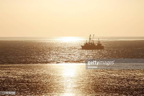 Shrimp Boat in Golden Sunset