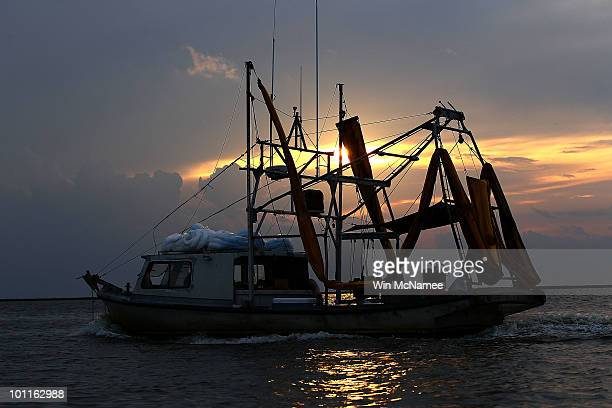 A shrimp boat outfitted with booms to collect oil makes its way to port May 27 2010 near Grand Isle Louisiana BP and government officials are...