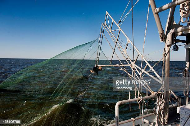 A shrimp net is lowered into the water from a shrimping boat off the coast of Grand Isle Louisiana US on Wednesday Oct 22 2014 Louisiana shrimpers...