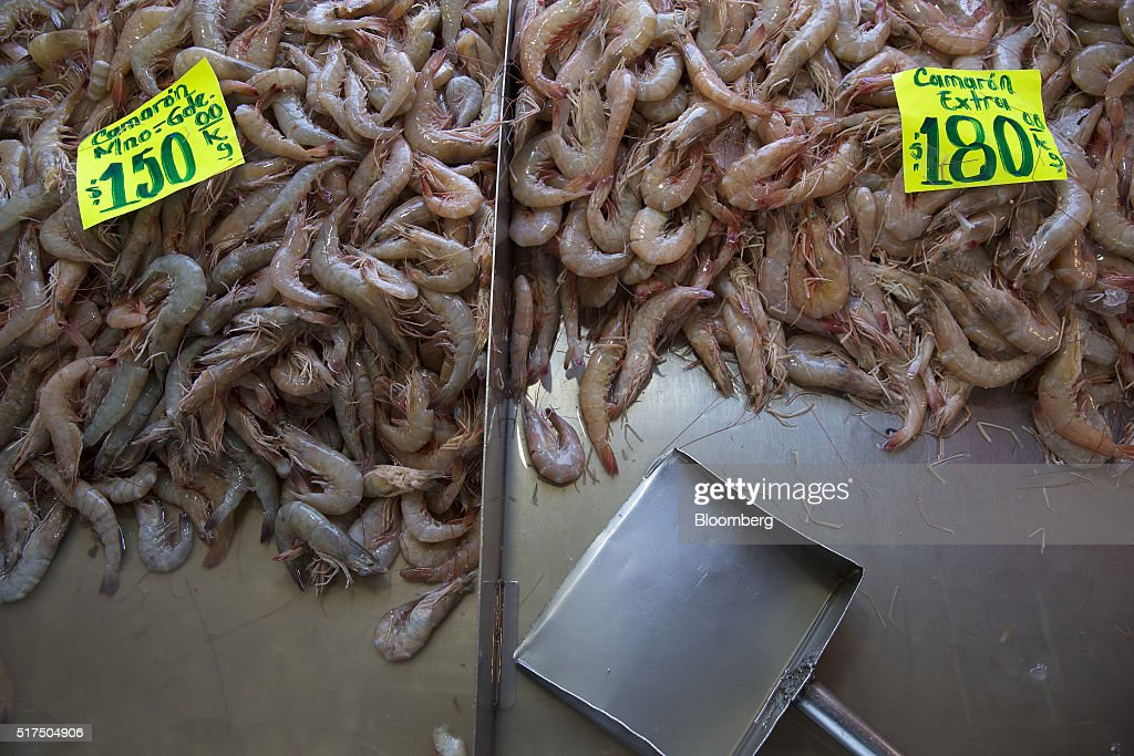 Operations at mexico 39 s largest fish market getty images for Fish market prices