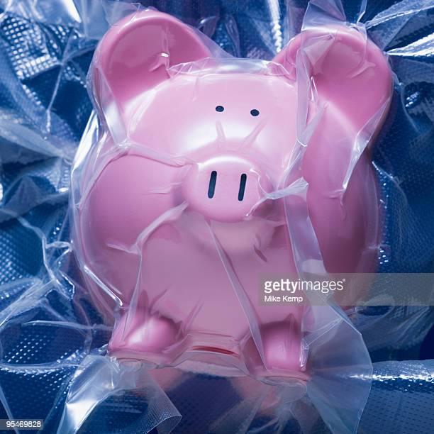 Shrink wrapped piggy bank