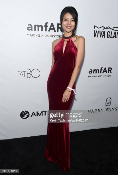 Sibley Scoles at amfAR Los Angeles 2017 at Ron Burkle's Green Acres Estate on October 13 2017 in Beverly Hills Californi