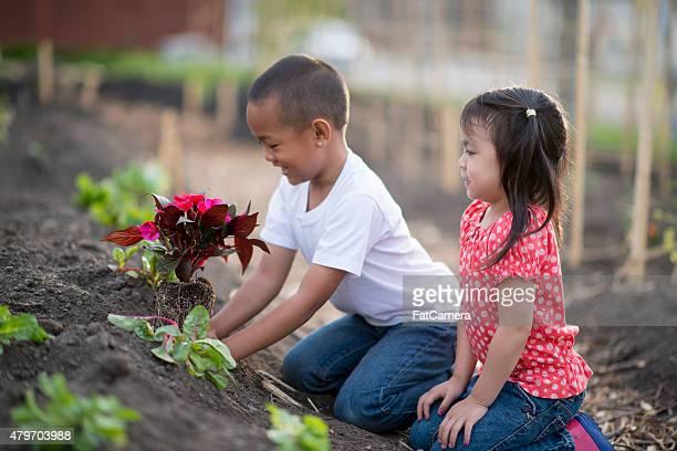 Aprendizagem no mesmo nível de Jardim