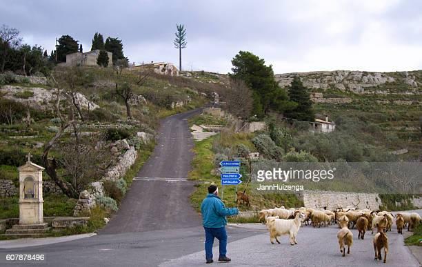Sicily Rural Scene: Shepherd with Flock and Roadside Shrine