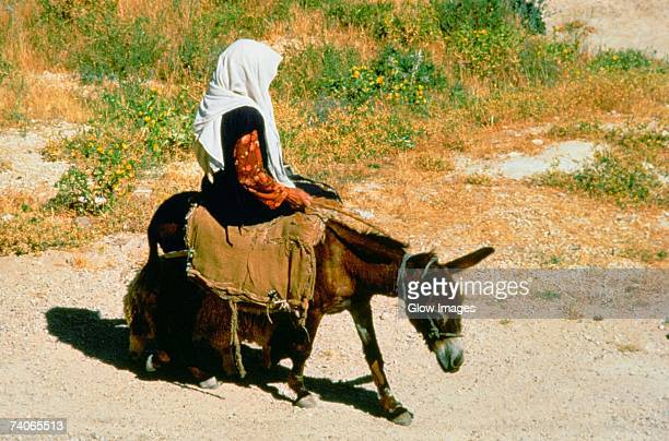 Side profile of a girl riding a donkey, Israel