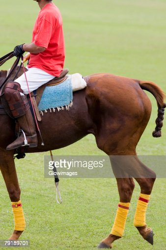 Side profile of a man playing polo : Stock Photo