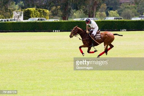 Side profile of a man playing polo : Foto de stock