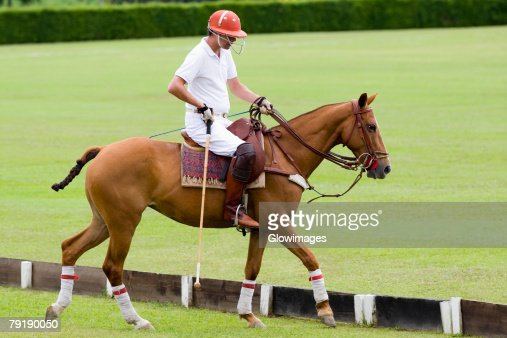 Side profile of a man playing polo : Foto de stock