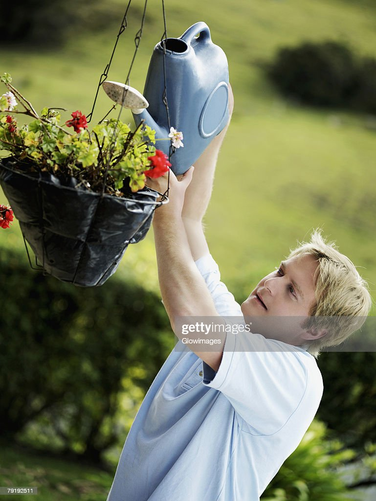 Side profile of a mid adult man watering a potted plant : Stock Photo
