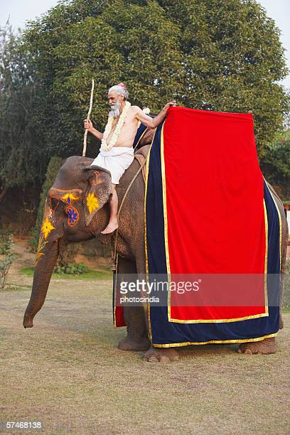 Side profile of a priest riding an elephant