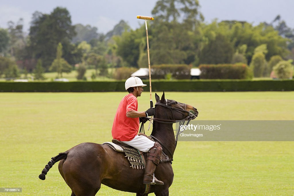 Side profile of a senior man playing polo : Stock Photo
