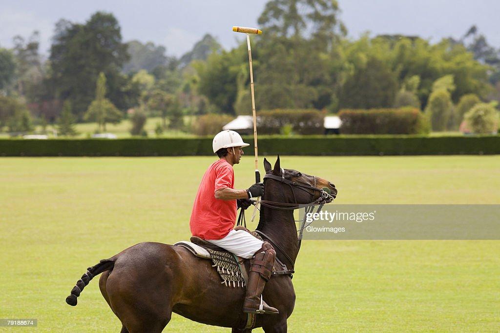 Side profile of a senior man playing polo : Foto de stock